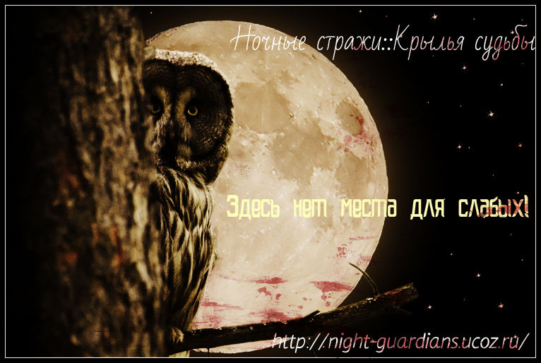 http://night-guardians.ucoz.ru/_fr/8/7590491.jpg